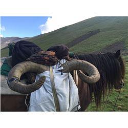 5 Day - Dagestan Tur Hunt Azerbaijan