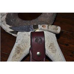 Stevenson Sheep Horn Knife