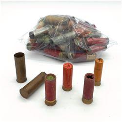Assorted Calibers of Shotgun Ammunition and Casings