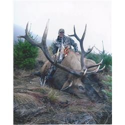 Oregon: 5 Day Big Game Hunt (Hunter's Choice) for One Hunter