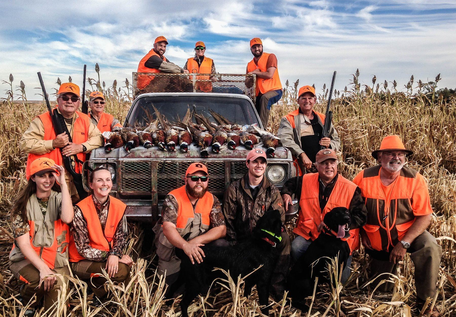South Dakota: 3 Day 3 Night Pheasant Hunt for 2 or 4 Hunters