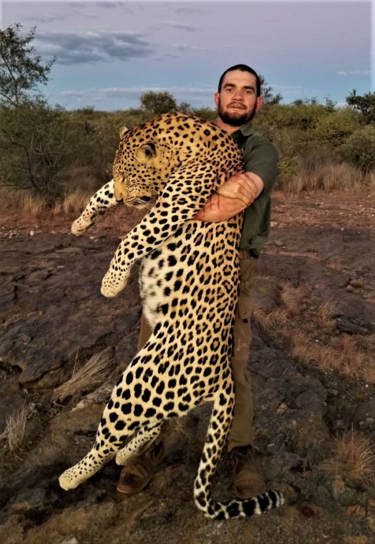 Namibia: 14 Day Leopard for 1 hunter, Includes 1 Leopard and 2 Hartman Zebra