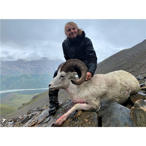 ALASKA: 5 Day Fully Guided Resident Youth Dall Sheep Hunt for 1 hunter and 1 Guardian!