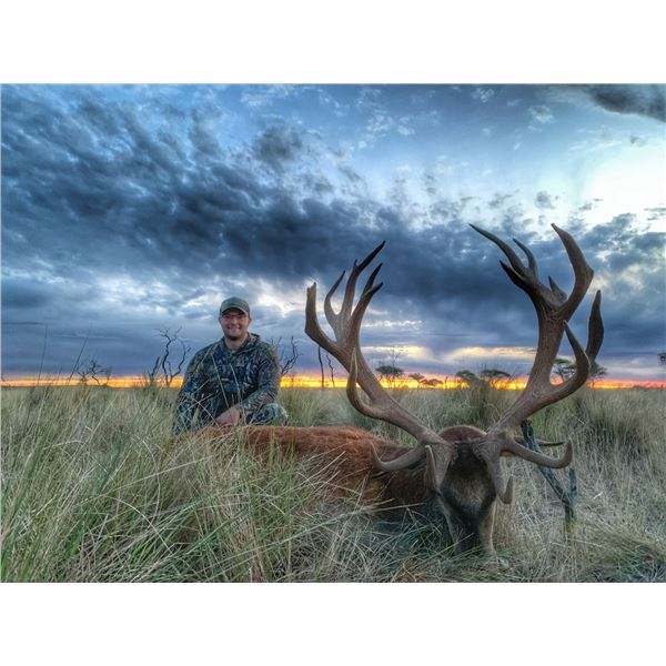 Argentina: 5 Day 6 Night Big Game Hunt for 2 hunters, includes 1 Red Stag & 1 Wild Boar