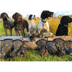 ONTARIO - 5 DAY GUIDED DUCK AND GROUSE COMBO HUNT FOR 1 HUNTER