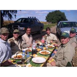 ARGENTINA - FOUR DAY DOVE HUNT FOR 2 TO 6 HUNTERS