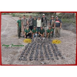 ARGENTINA - FOUR DAY DOVE HUNT FOR FOUR HUNTERS