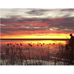 TEXAS- 3 DAY GAME BIRD HUNT OF VARIOUS SPECIES FOR 2 HUNTERS