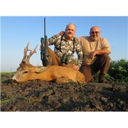 SERBIA – ROE DEER HUNT WITH RIFLE FOR 2 HUNTERS