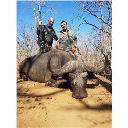 MOZAMBIQUE-10 DAY CAPE BUFFALO & NILE CROC. HUNT FOR 2 HUNTERS