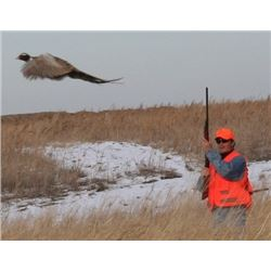 SOUTH DAKOTA - 2 DAYS/2 NIGHTS PHEASANT HUNT FOR TWO HUNTERS