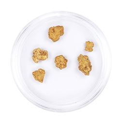 Lot of Gold Nuggets 2.50 grams Total Weight
