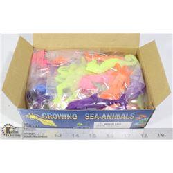 RETAIL DISPLAY OF GROWING SEA ANIMALS