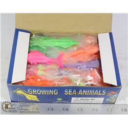 RETAIL DISPLAY OF GROWING SEA ANIMALS