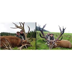 International Adventures Unlimited Scotland Red Stag Hunt