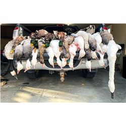 Safari Unlimited – North Dakota Duck Hunt for 2 Hunters