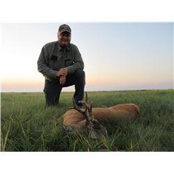 Safari Unlimited – 8 Day Serbian Roe Deer hunt for 2 hunters or 1 hunter and 1 observer.