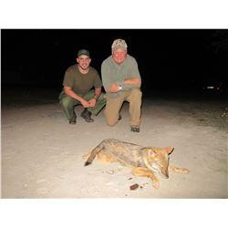 Safari Unlimited – Serbia Predator Hunt for 2 hunters or 1 hunter and 1 observer