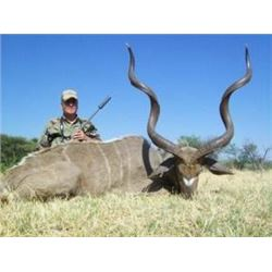 Kudu, Zebra, Blue Wildebesst,  and Blesbuck Safari for 2 Hunters and 2 Observers