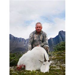 Mountain Goat Hunt in British Columbia