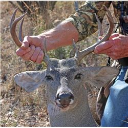 Arizona Coues Deer Hunt for Two Hunters