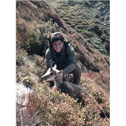 3-day hunting trip for 1 hunter for Cantabrian Chamois in Northern Spain
