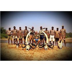 Zimbabwe Save Valley Conservancy Lion Hunt