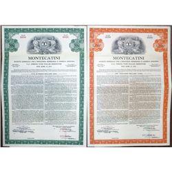 Montecatini Societa Generale per l'Industria Mineraria e Chimica Anonima, 1959 Specimen Bond Pair