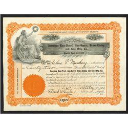 American Rust-Proof, Gun-Barrel, Brass-Lining and Gun Mfg. Co. 1910 I/U Stock Certificate