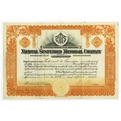 National Suspended Monorail Co., 1920 I/U Stock Certificate