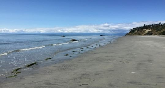 Escape to Paradise - Savary Island, BC