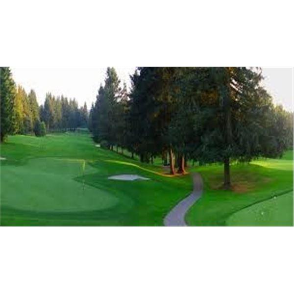 Mission Golf Course - 4 x Passes + Titleist Pro V1 Balls