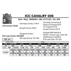 ICC CAVALRY 006