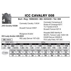 ICC CAVALRY 008
