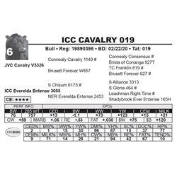 ICC CAVALRY 019