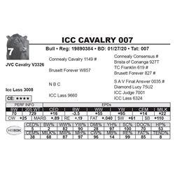 ICC CAVALRY 007