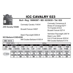 ICC CAVALRY 023