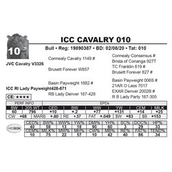 ICC CAVALRY 010