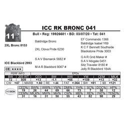 ICC RK BRONC 041
