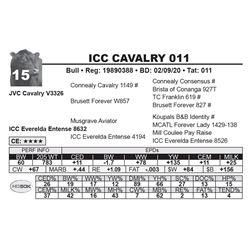 ICC CAVALRY 011
