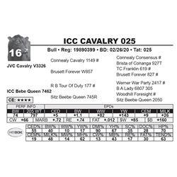 ICC CAVALRY 025