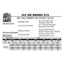 ICC RK BRONC 015