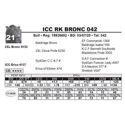 ICC RK BRONC 042