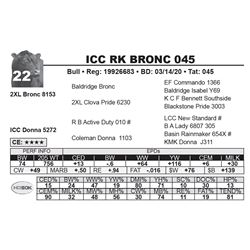 ICC RK BRONC 045