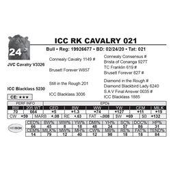 ICC RK CAVALRY 021