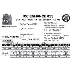 ICC ENHANCE 033