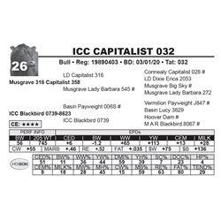 ICC CAPITALIST 032