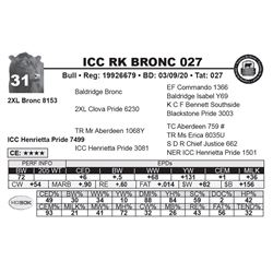 ICC RK BRONC 027