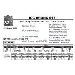 ICC BRONC 017