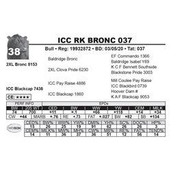 ICC RK BRONC 037